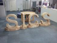 SICS-2